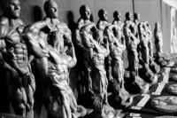 http://www.giampieroassumma.com/files/gimgs/th-8_14_14_bodybuilders-20-01.jpeg